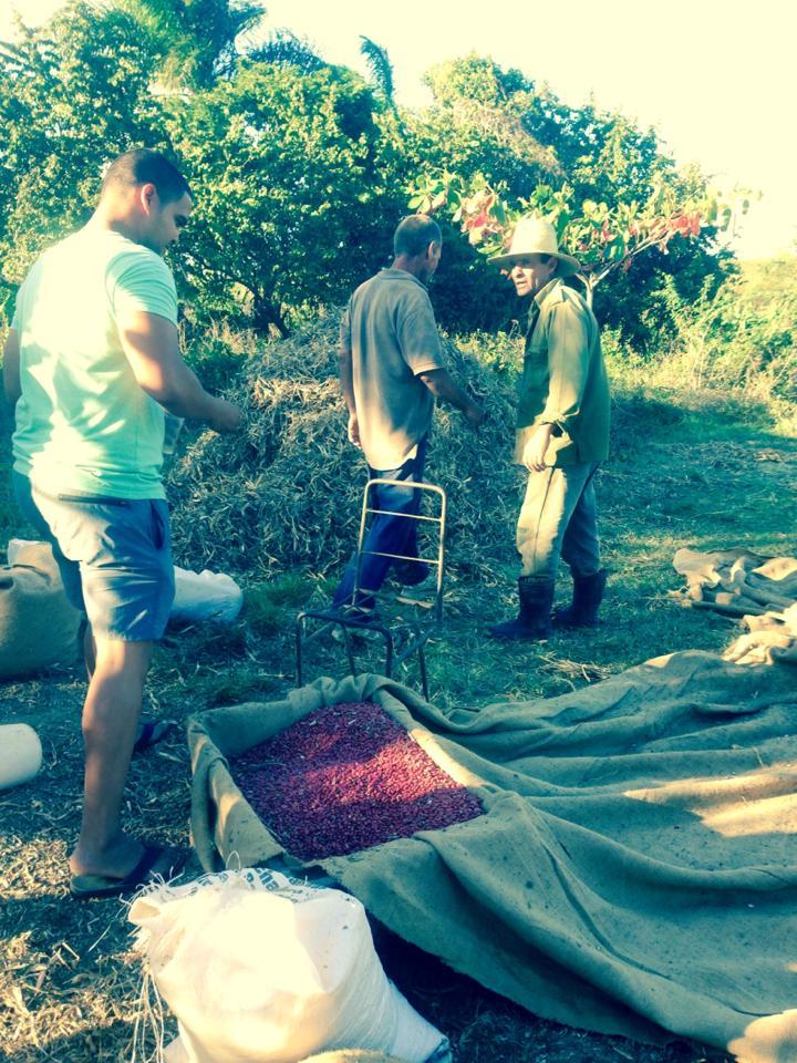 Roberto and farmers in Cienfuegos